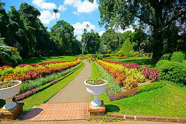preadeniya botanical garden